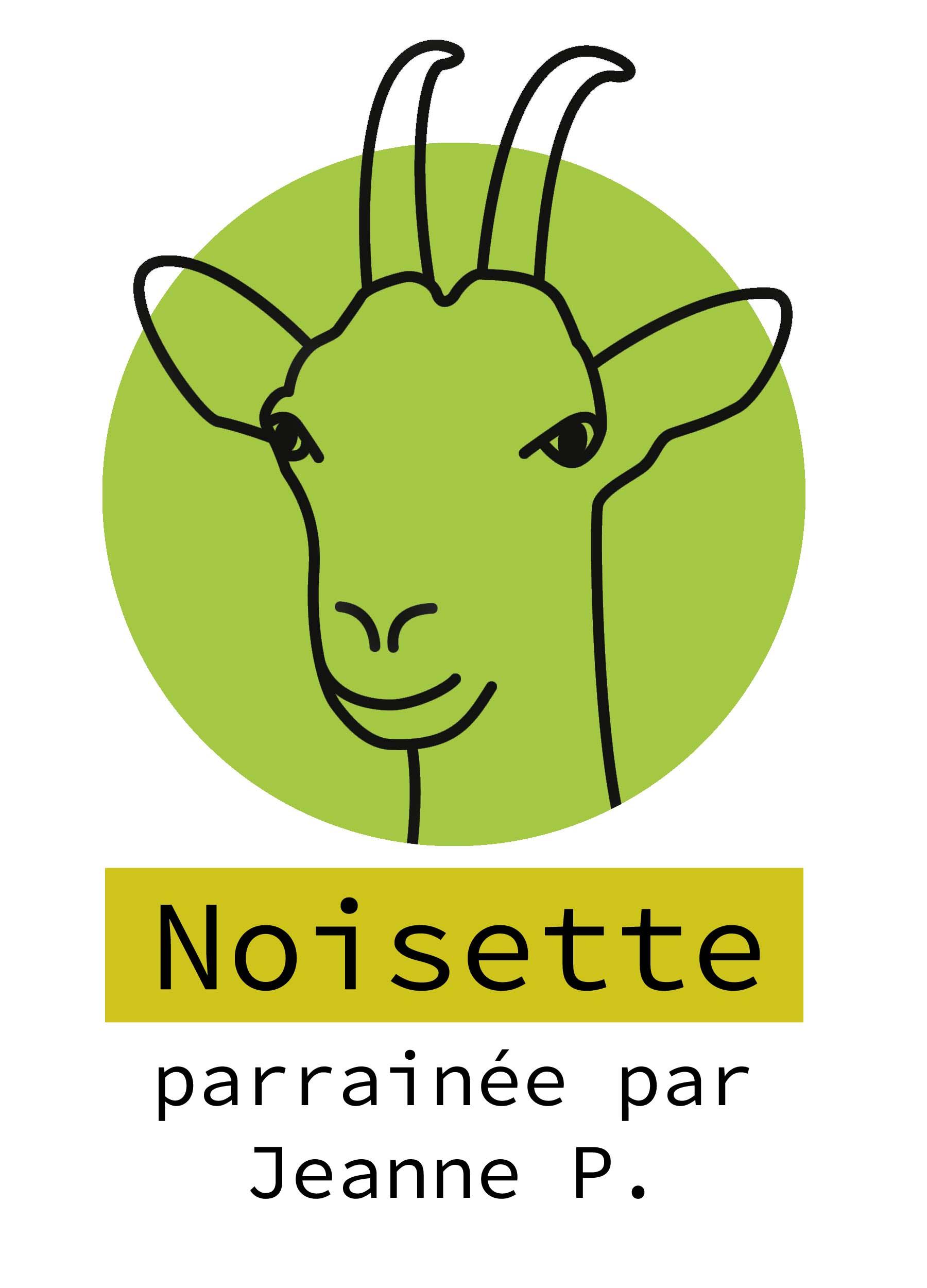 13-noisette
