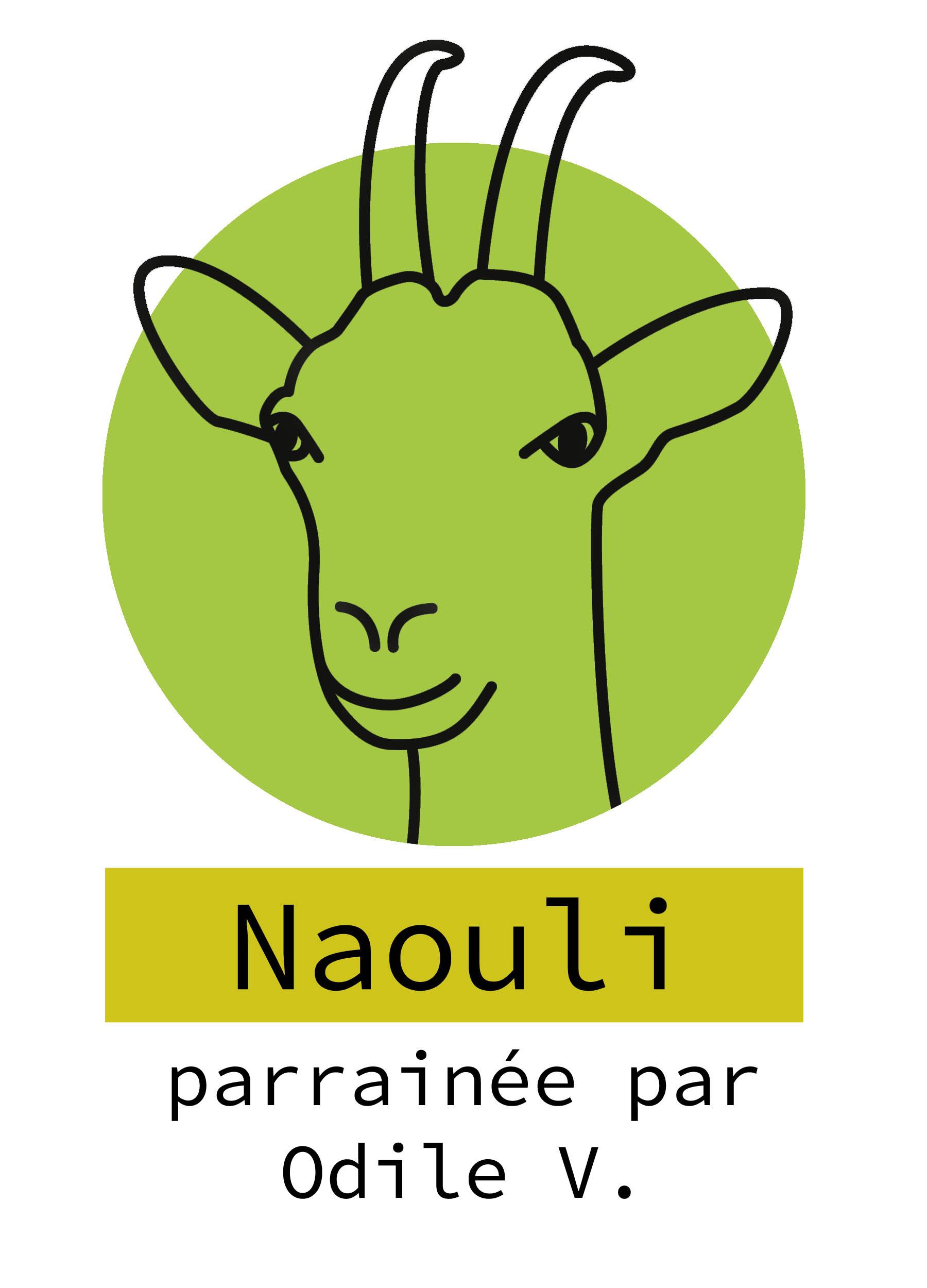 31-Naouli.jpg