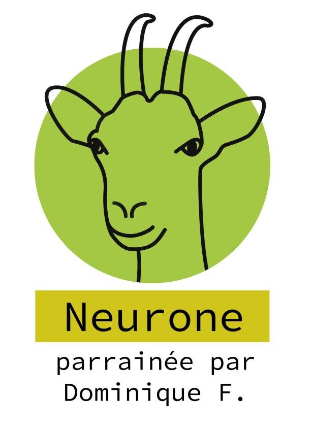 34-neurone