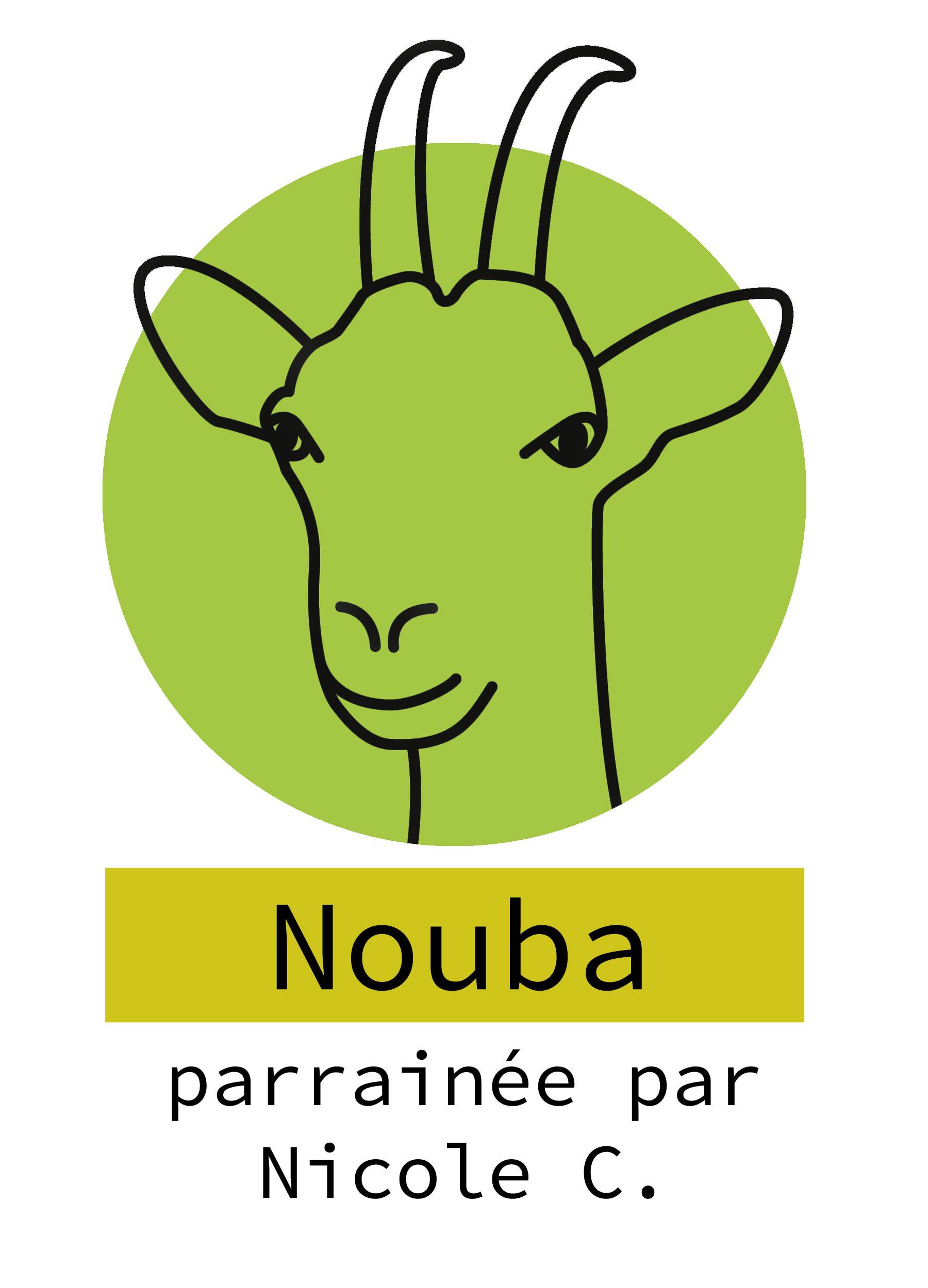 37-nouba