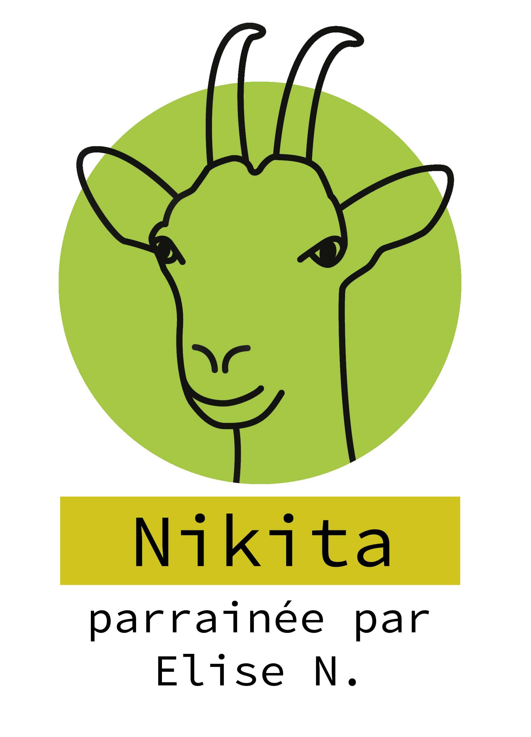 4-nikita