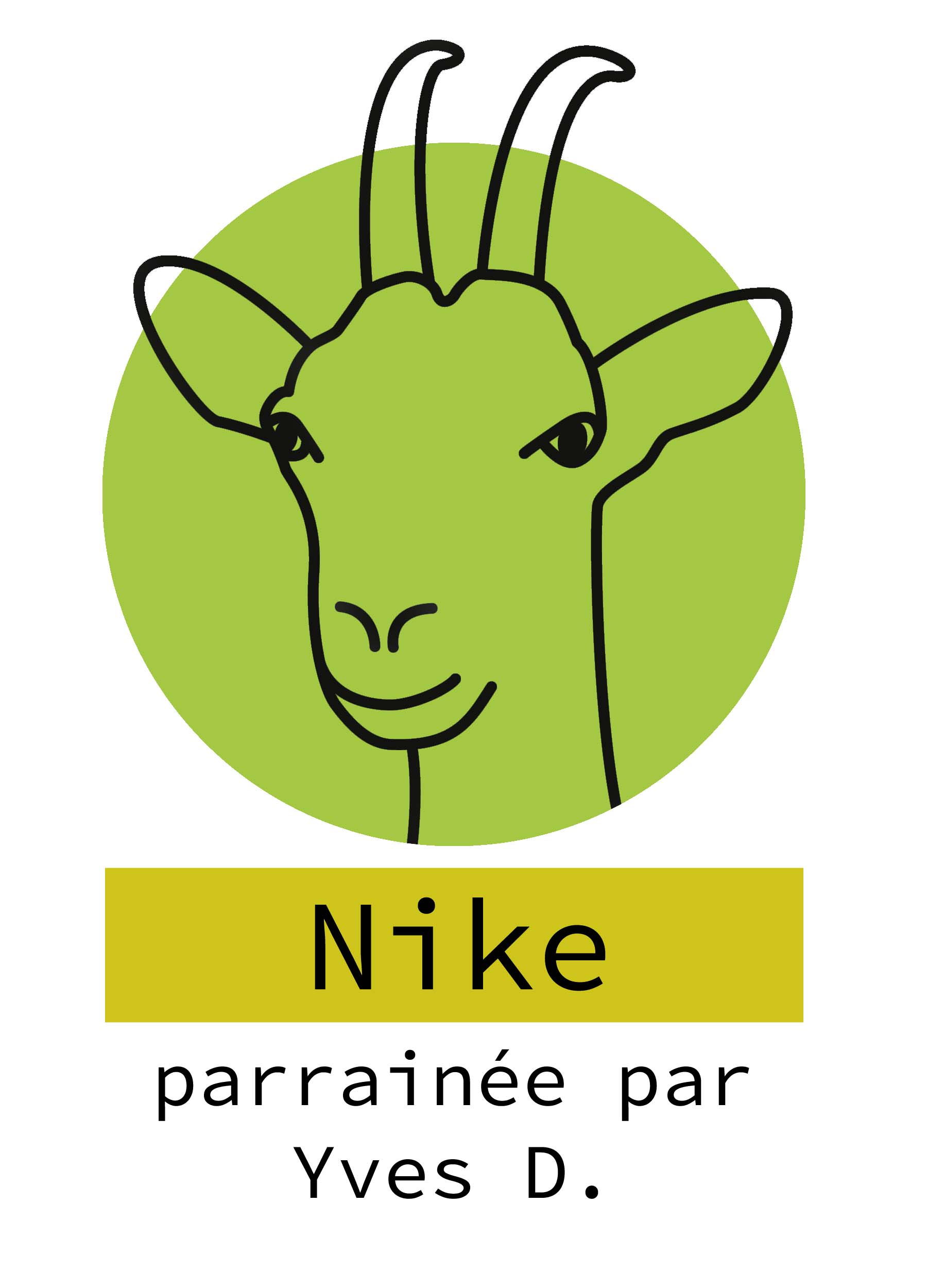 7- Nike.jpg