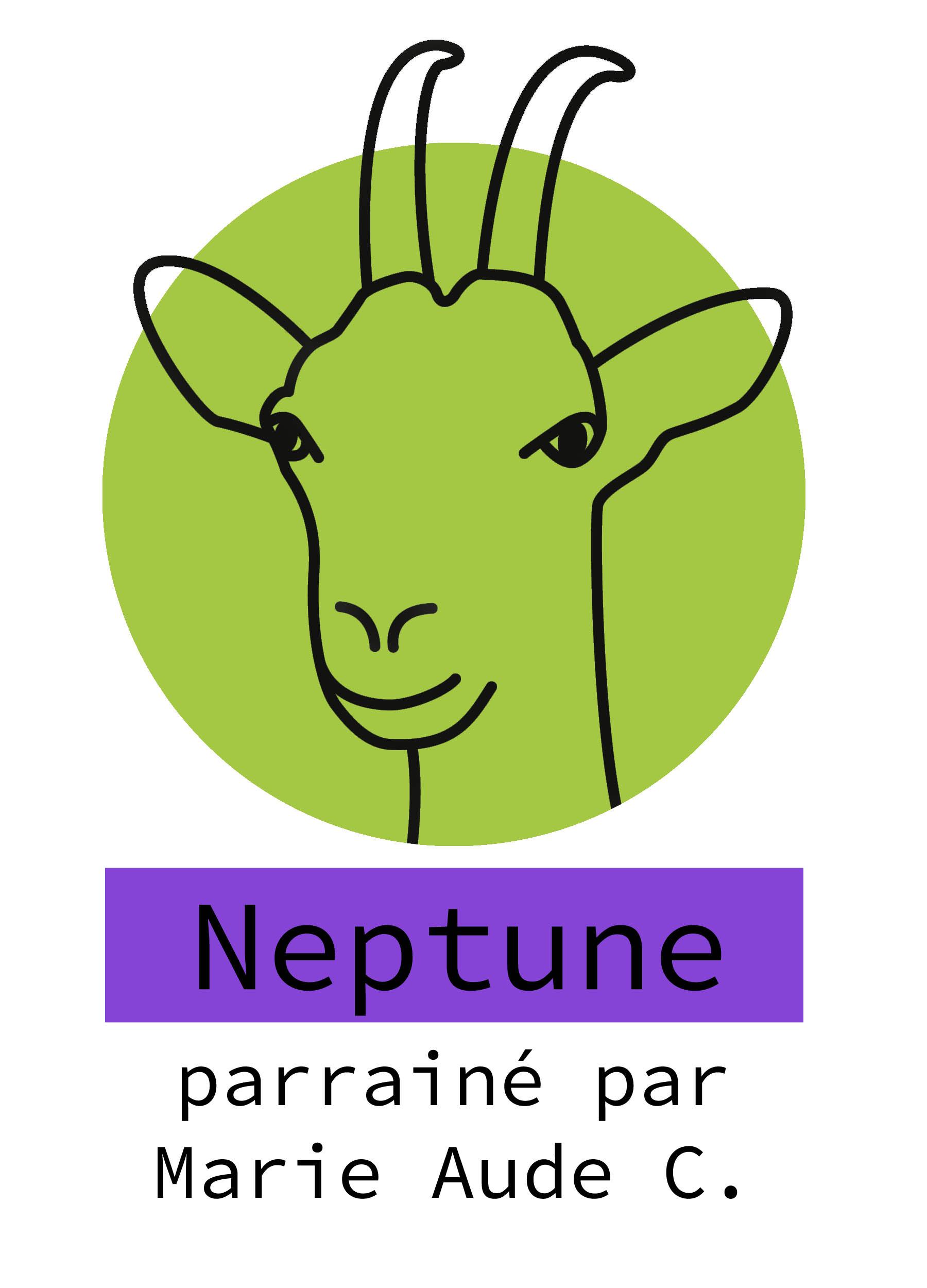 X-Neptune copie.jpg